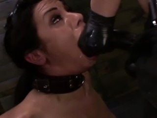 Petite lezdom sub rides sybian and receives strapon punishme