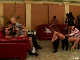 Messy orgy with top notch escort bitches in luxurious lingerie